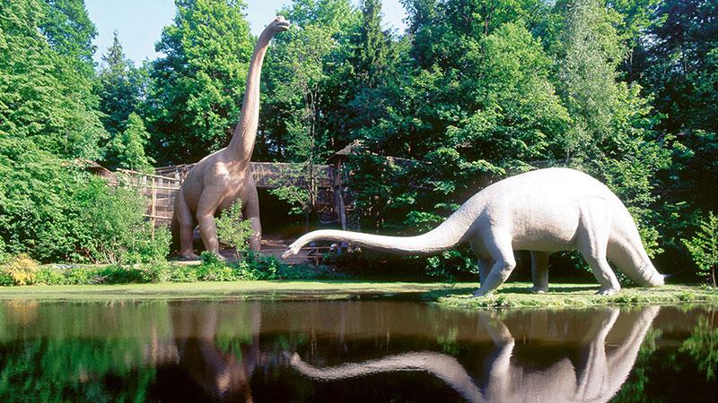 Brachiosaurus u. Diplodocus